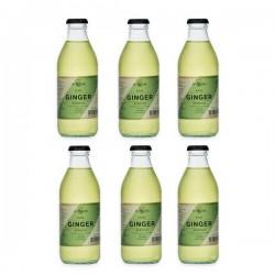 Ginger Beer Noé 20cl, 6er-Pack