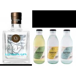 Gin Delta Spirits Box mit...